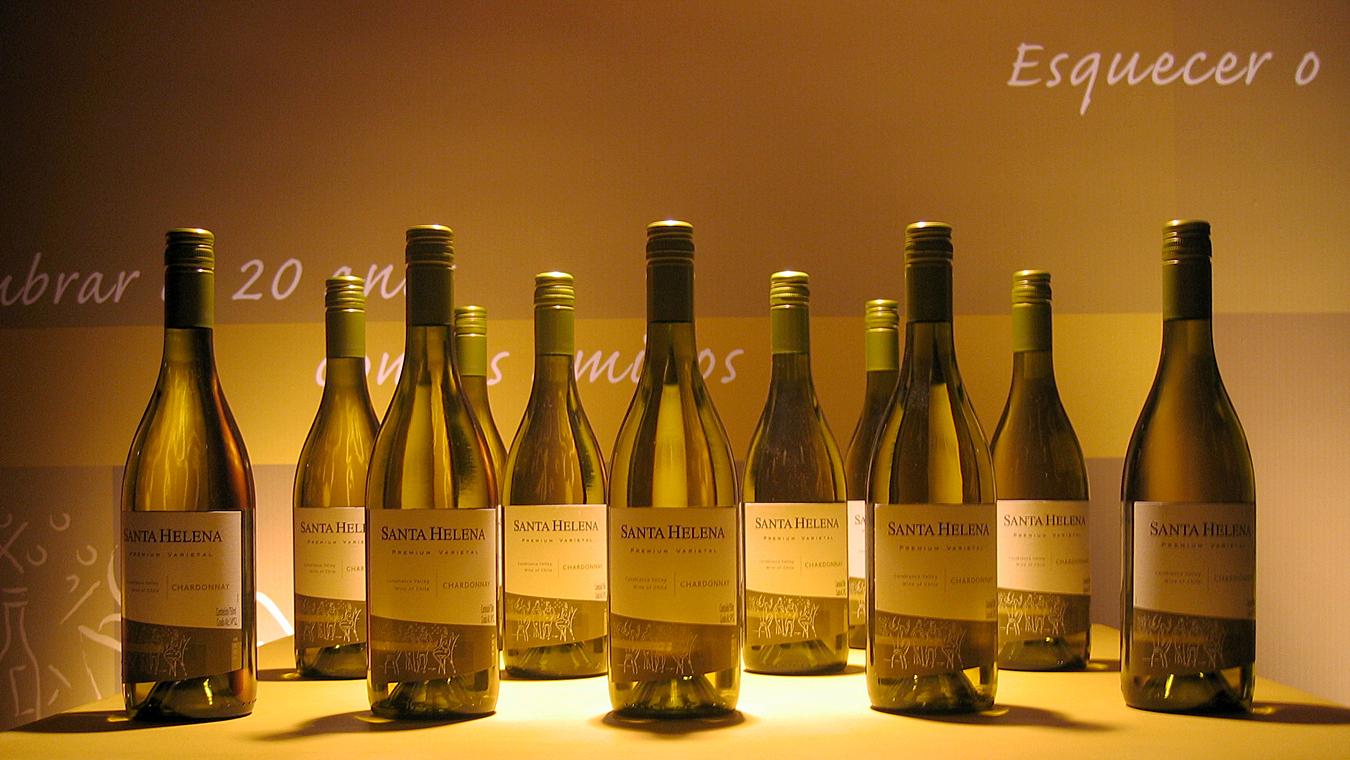 Evento Vinho Santa Helena 3